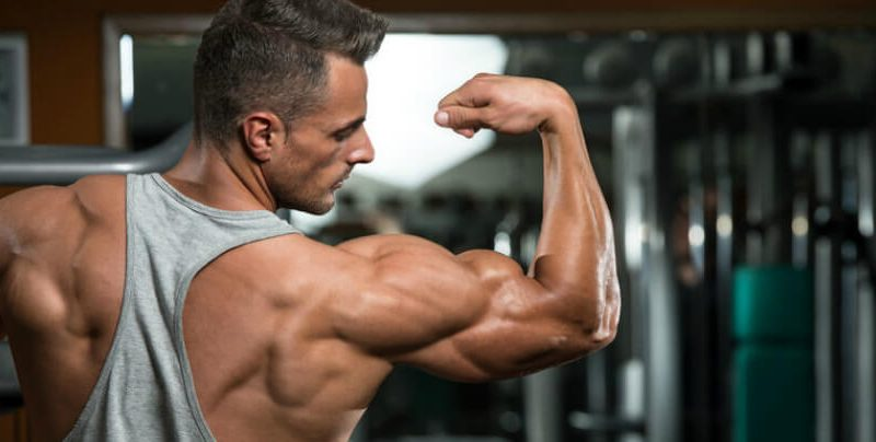 Whey Protein Isolate Health Benefits